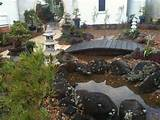 Japanese gardens in Bundaberg Landscaping
