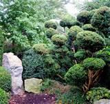 japanese garden leisnerstrasse
