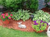 flower gardening ideas backyard landscape garden