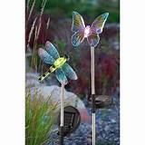 or dragonfly solar lights save 2 pk of decorative solar lights