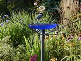 Member Inspired Landscaping Ideas & Garden Ideas