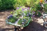 Fairy gardens anyone?