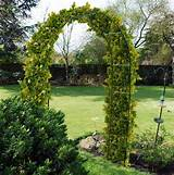 Details about NEW 2.4M STEEL GARDEN ROSE ARCH FOR CLIMBING PLANTS ...