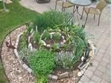 herb spiral july 2010