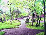 garden-japanese-zen-garden-with-rain-forest-atmosphere-and-natural ...