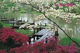 japan japanese landscape
