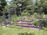 in limited space breathtaking vegetable garden fencing ideas