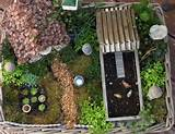 an adorable fairy garden to go with your fairy house hgtv gardens ...
