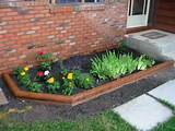 flower garden this fall this will fill in the flower bed rather