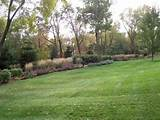 planting and garden design trees shrubs and flowers add beauty to