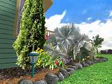 software for landscape design will help you to see how your ideas will