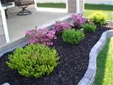 you trying to find the perfect landscaping plants? ~ Landscape Plant