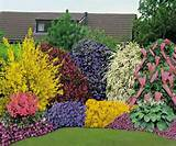 Beautiful Flower Beds Adding Bright Centerpieces to Yard Landscaping ...