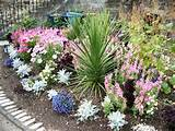 bed designs pictures of flower beds flower bed ideas http www rose ...