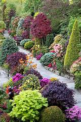 beautiful combination of shrubs trees flowers
