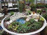 Miniature Fairy Gardens | 12 Photos of the Mini Fairy Garden Ideas