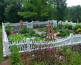 check out other gallery of small vegetable garden fence ideas