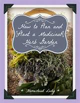 How-to-plan-and-plant-a-medicinal-herb-garden-www.homesteadlady.com ...