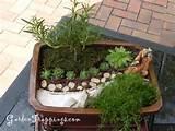 Miniature Zen Garden Gallery