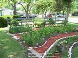 landscaping ideas in texas – zone 8 texas garden tour lots of diy ...