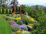 Flower Gardens Backyard Landscape Designs Ideas : Flower Gardens ...