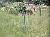 Quickly Construct a Simple Garden Fence