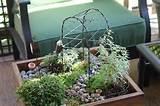 miniature table top garden with stepables my fairy garden