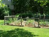 garden fences ideas green lawn small garden simple garden fences