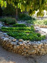 Natural Stone Raised Flower Bed Fresh Ornamental Plants Leafy Trees