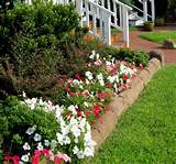 Flower Bed Designs: Enrich Your Garden