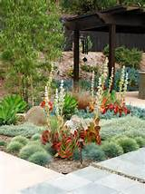 Amazing Ice Plant decorating ideas for Stunning Landscape Contemporary ...