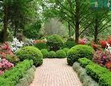easy garden ideas - simple garden designs landscape idea for backyard ...