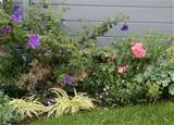 bed ideas designs for garden flower beds http www rose gardening made ...
