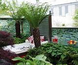Download Landscaping Ideas For Small Yard, Small Yard on Original Size ...