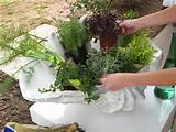 Herb Container Garden: Make it easy to snip a handful of fresh herbs ...