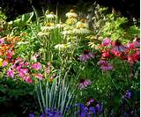 14 Interesting Easy Flower Garden Ideas Image Design
