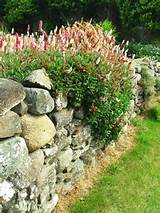 using stone garden inspirational ideas 05 jpg