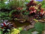 حديقة بيتك هي المدخل والعنوان الذي ...