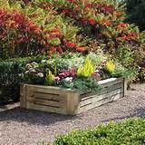cool colorful flowers leafy shrubs rustic wood raised flower bed
