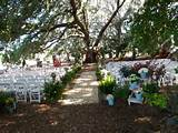 Related to Small Spring Outdoor Wedding Ideas