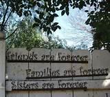 Forever fence....