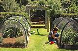 Vegetable Garden Design Ideas for Landscape Rustic design ideas ...