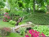 small flower gardens garden flowers wallpapers small flower gardens