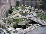 stone garden ideas rock garden ideas alpine garden pictures 720x540