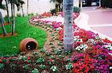 tropical landscaping ideas – tropical landscaping ideas landscaping ...