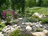 rock garden ideas - landscaping idea for a small rock garden [563x422 ...
