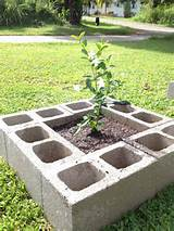 Inexpensive raised flower bed- plant flowers in the blocks for ...