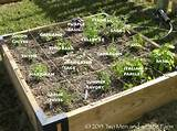herb square bed design how to plant a raised bed garden raised