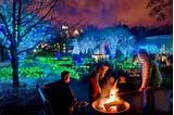 christmas lights and activities at the atlanta botanical garden