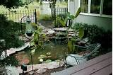 small patio garden ideas - small backyard landscaping ideas with water ...